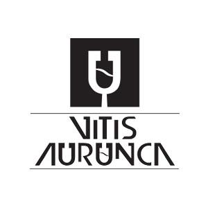 Vitis Aurunca